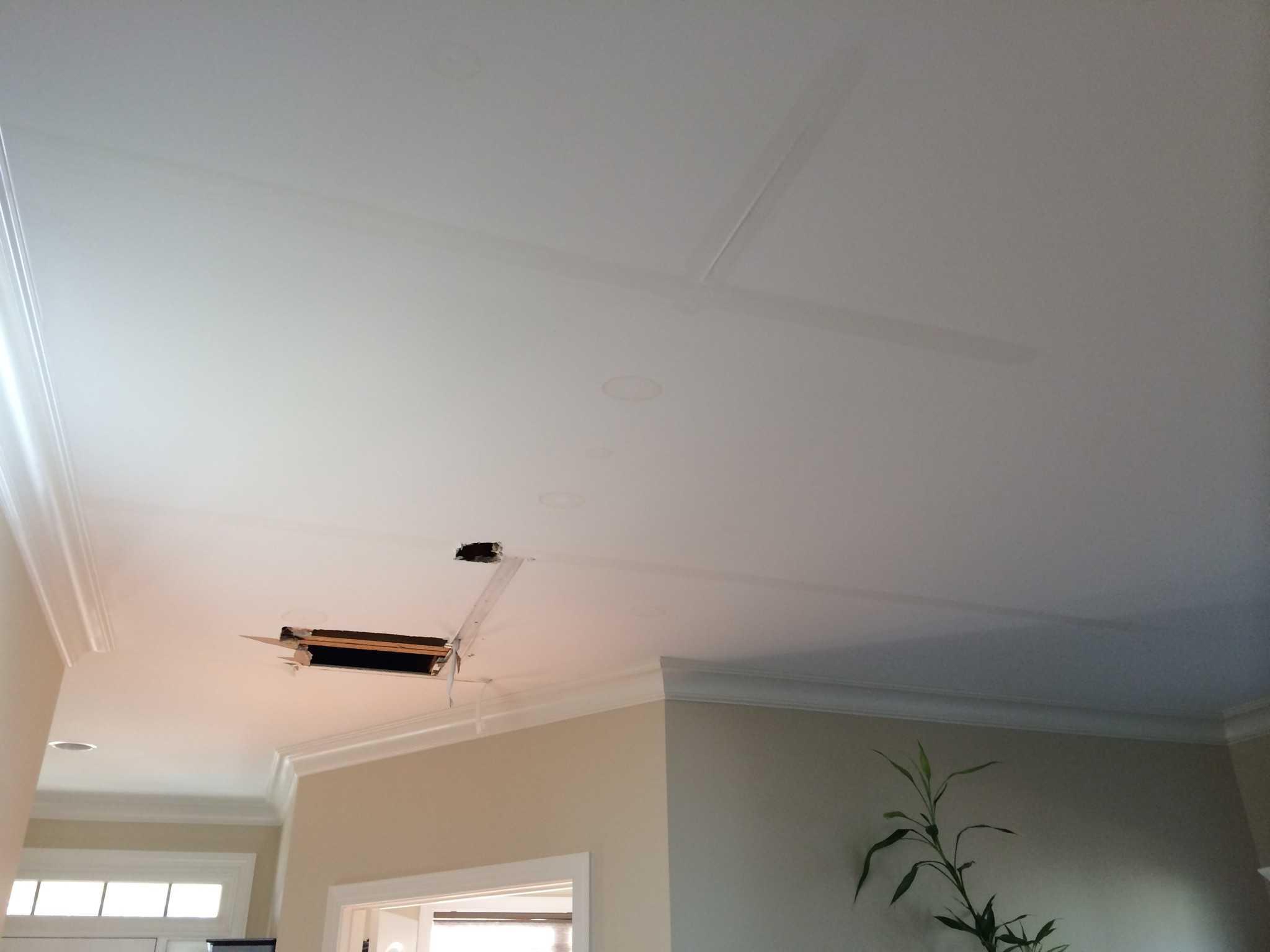 Ceiling leak - Picture 1